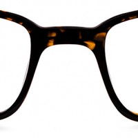 Langhorne | Warby Parker (Color: Whiskey Tortoise)